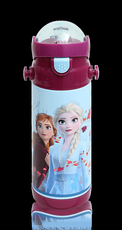 Frozen - FROZEN ÇELİK MATARA / DESTINYS CALLING